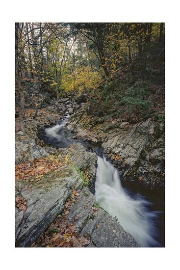 Woodland Stream Autumn Leaves-Henri Silberman-Photographic Print