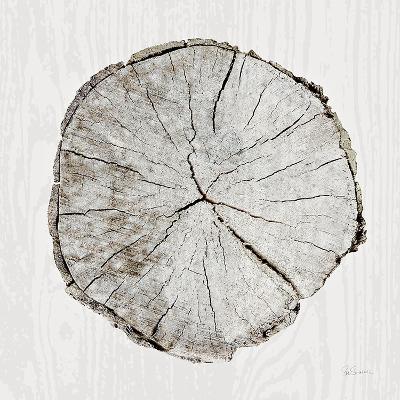 Woodland Years I-Sue Schlabach-Art Print