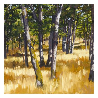 Woodlands Bright-Sarah Waldron-Premium Giclee Print