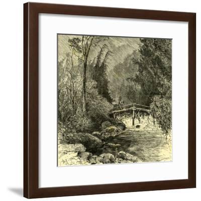 Woods Austria 1891--Framed Giclee Print