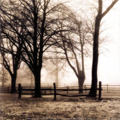 Woods with Fence-Harold Silverman-Art Print