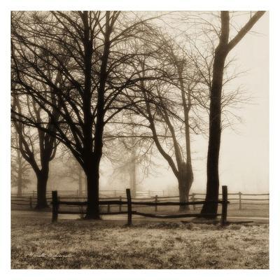 https://imgc.artprintimages.com/img/print/woods-with-fence_u-l-f8crzr0.jpg?p=0