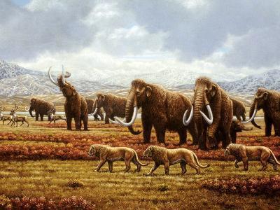 Woolly Mammoths-Mauricio Anton-Photographic Print