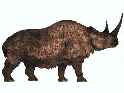 Woolly Rhinoceros, an Extinct Mammal from the Pleistocene Period--Art Print