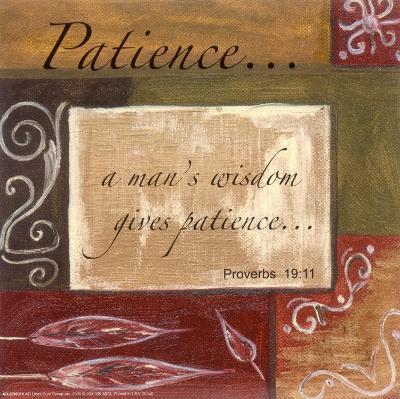 Words to Live By, Patience-Debbie DeWitt-Art Print