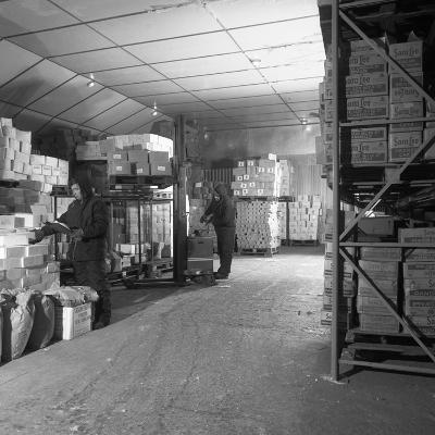 Workers in a Cold Store at Modern Foods, Mexborough, South Yorkshire, 1973-Michael Walters-Photographic Print