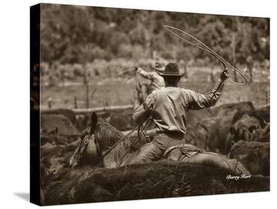 Working the Herd-Barry Hart-Stretched Canvas Print