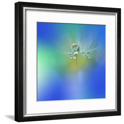 World of Drops-Juliana Nan-Framed Photographic Print