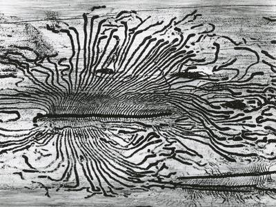 https://imgc.artprintimages.com/img/print/worm-wood-california-c-1937_u-l-q1g6ws30.jpg?p=0