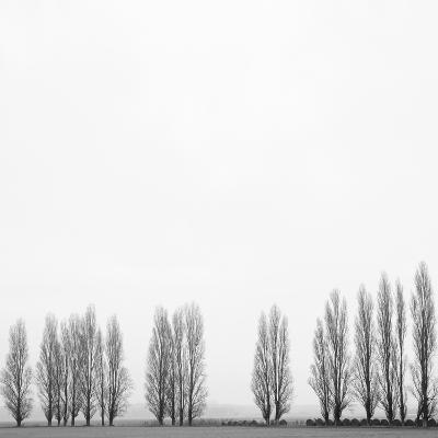 Wrapped in Silence-Marco Carmassi-Photographic Print