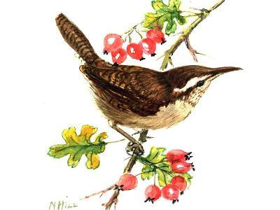 Wren and Rosehips-Nell Hill-Giclee Print
