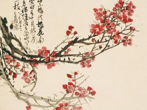 Plum Blossoms by Wu Changshuo