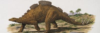 Wuerhosaurus Dinosaur Walking on a Landscape--Photographic Print