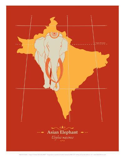 WWF Asian Elephant - Animal Tails-Annette D'Oyly-Art Print