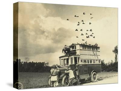WWI: Soldiers Setting Free Some Carrier Pigeons, Northern France