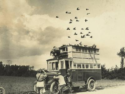 WWI: Soldiers Setting Free Some Carrier Pigeons, Northern France--Photographic Print