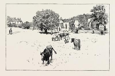 Wycliffe--Giclee Print