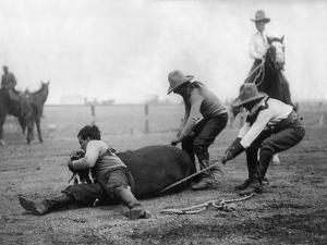 Wyoming: Rodeo, C1910
