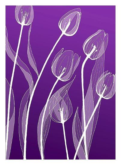 X-ray Flowers-GraphINC-Art Print