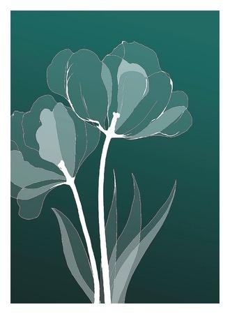 https://imgc.artprintimages.com/img/print/x-ray-flowers_u-l-f8vmxc0.jpg?p=0