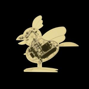 X-Ray of Toy Rooster
