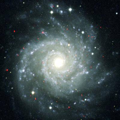 X-ray Sources In M74, Chandra Image--Photographic Print