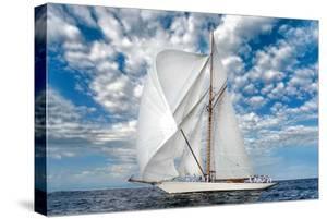 Voyage by Xavier Ortega