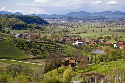 Green Landscape of Zagorje Region by xbrchx