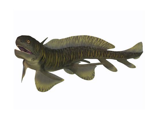 Xenacanthus, a Devonian Freshwater Shark--Art Print