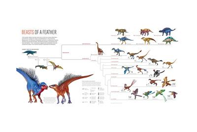 Family Tree of Archosaurs