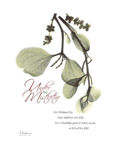 Xmas Mistletoe-Albert Koetsier-Premium Giclee Print