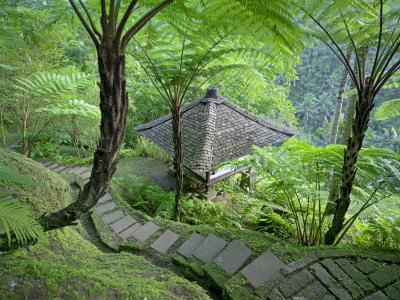 Stone Stairway Leads to a Hut in the Jungle