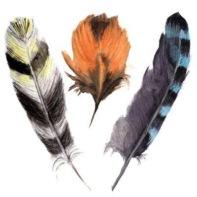Hand Drawn Watercolor Vibrant Feather Set. Boho Feather Style. Illustration Feather. Isolated on Wh