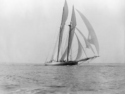 Yacht in the Sea--Photographic Print