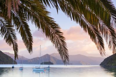 Yachts Anchored on the Idyllic Queen Charlotte Sound, Marlborough Sounds, South Island, New Zealand-Doug Pearson-Photographic Print