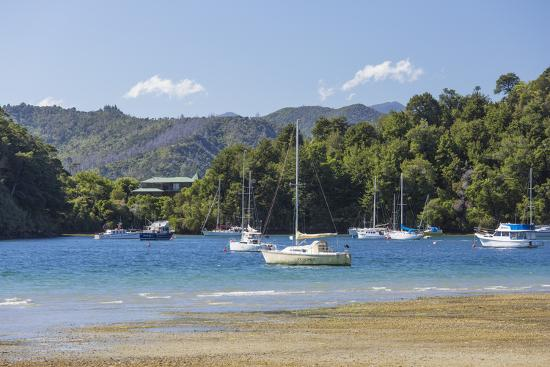 Yachts moored in the sheltered harbour, Ngakuta Bay, near Picton, Marlborough, South Island, New Ze-Ruth Tomlinson-Photographic Print