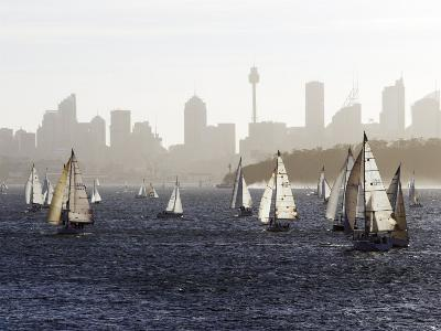 Yachts on Sydney Harbour in Late Afternoon-Oliver Strewe-Photographic Print