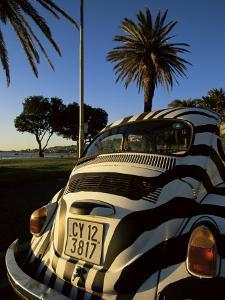 Back of a Beetle Car Painted in Zebra Stripes, Cape Town, South Africa, Africa by Yadid Levy