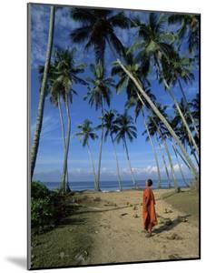 Buddhist Monk Looking up at Palm Trees Between Unawatuna and Weligama, Sri Lanka by Yadid Levy