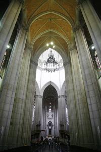 Catedral da Se, Sao Paulo, Brazil, South America by Yadid Levy
