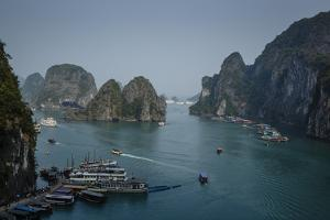 Halong Bay, UNESCO World Heritage Site, Vietnam, Indochina, Southeast Asia, Asia by Yadid Levy