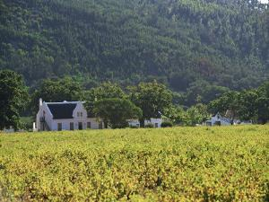 House in the Wine Growing Area of Franschhoek, Cape Province, South Africa, Africa by Yadid Levy