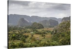 Mogotes in the Vinales Valley, UNESCO World Heritage Site, Pinar Del Rio, Cuba, West Indies by Yadid Levy