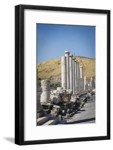 Ruins of the Roman-Byzantine City of Scythopolis by Yadid Levy