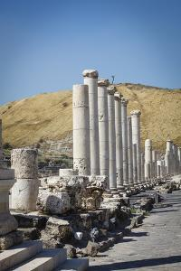 Ruins of the Roman-Byzantine City of Scythopolis by Yadid Levy