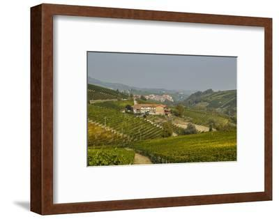 View over Barolo Village and Vineyards, Langhe, Cuneo District, Piedmont, Italy, Europe