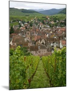 View over the Village of Riquewihr and Vineyards in the Wine Route Area, Alsace, France, Europe by Yadid Levy