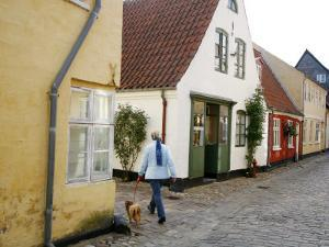 Woman Walking with a Dog in Ribe Historic Center, Ribe, Jutland, Denmark, Scandinavia, Europe by Yadid Levy