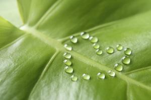 Water Drops on Green Leaf,Heart-Shaped by Yagi Studio