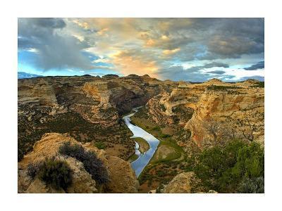 Yampa River, Dinosaur National Monument, Colorado-Tim Fitzharris-Art Print
